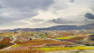 La Rioja vineyards in autumn